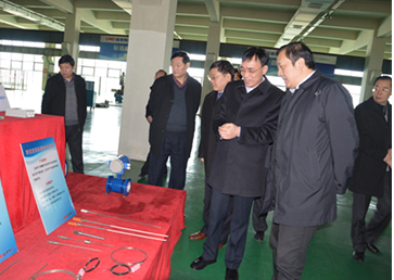 Chuzhou Municipal Committee, Municipal Commission for Discipline Inspection Li Yuping and his party to Rand Group Investigagion